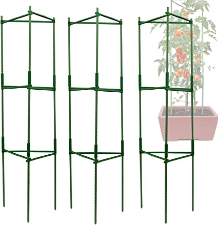 Trellis Gardening Climbing Growing Cages Stakes Tomato and Plant Support Cage