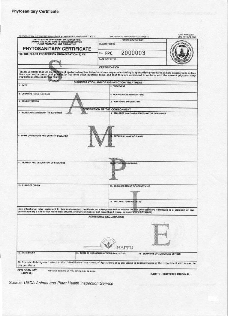 Amazon Seedworld Phyto Sanitary Certificate For Seeds Export