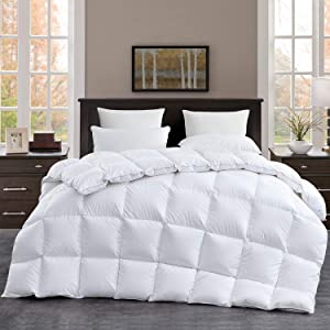 Luxurious Goose Down Comforter Queen Size Duvet Insert for All Season, White Solid, 42 oz Fill Weight Hypo-allergenic White Goose Down Feather, 100% Cotton Shell Down Proof with 8 Corner Tabs