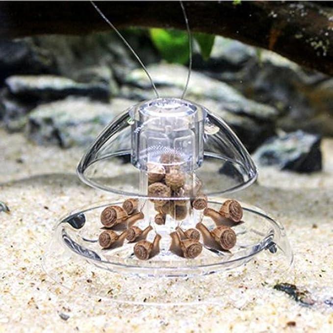 ueetek plástico Trampa para caracoles dispositivo de limpieza para Acuario: Amazon.es: Productos para mascotas