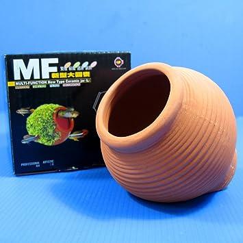 Jarra de cerámica adorno de acuario cría conos cueva decoración planta cíclidos (grande): Amazon.es: Productos para mascotas
