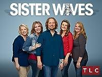 Sister Wives Season 8
