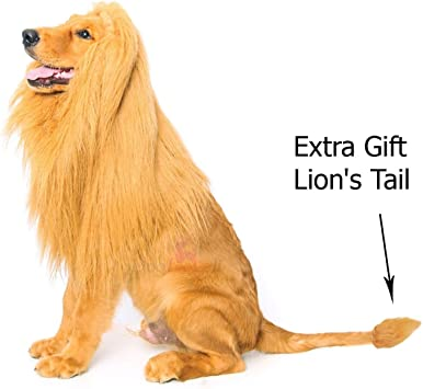 Amazon.com : DOGLOVEIT Lion Mane for Dog, Dog Costume with Gift [Lion Tail]  Lion Wig for Dog : Pet Supplies