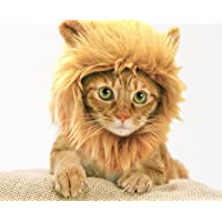Prymal Lion Mane Dog Cat Costume Also can be Used as Donald Trump Wig. This Pet Costume Turns Your Cat Or Small Dog Into a Ferocious Lion King! (Please be Aware of Fake Products from Other Sellers).