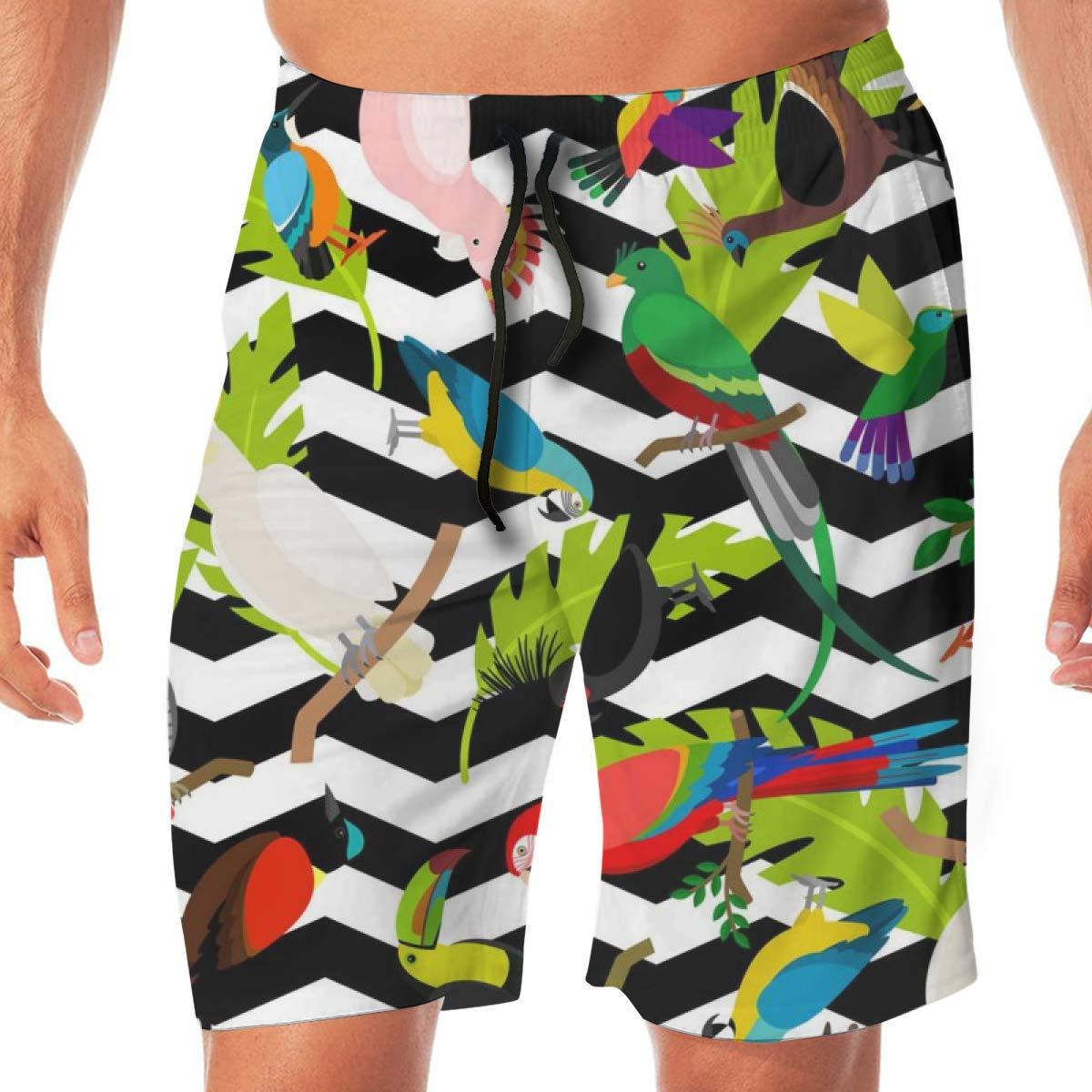 TR2YU7YT Fashion Parrots Casual Mens Swim Trunks Quick Dry Printed Beach Shorts Summer Boardshorts Bathing Suits with Drawstring