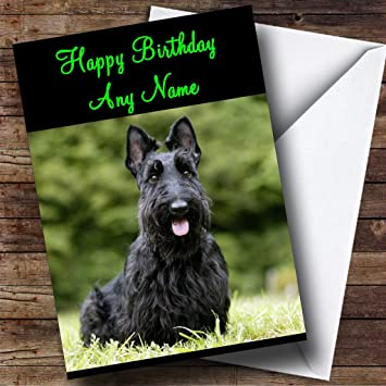Amazon scottish terrier personalized birthday greetings card scottish terrier personalized birthday greetings card m4hsunfo