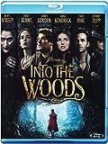 Into the Woods (Blu-ray) [audio español] [Italia] [Blu-ray]