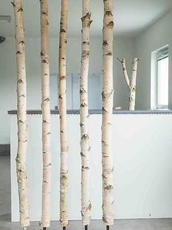 Weißer Birkenstamm Mit Stellfuß Getrocknet   3 Meter Länge