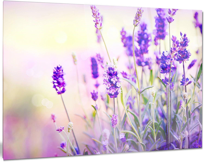 Landscape Artwork Glossy Metal Wall Art,Purple,60x28 Designart MT14817-401 Stunning Purple Lavender Field