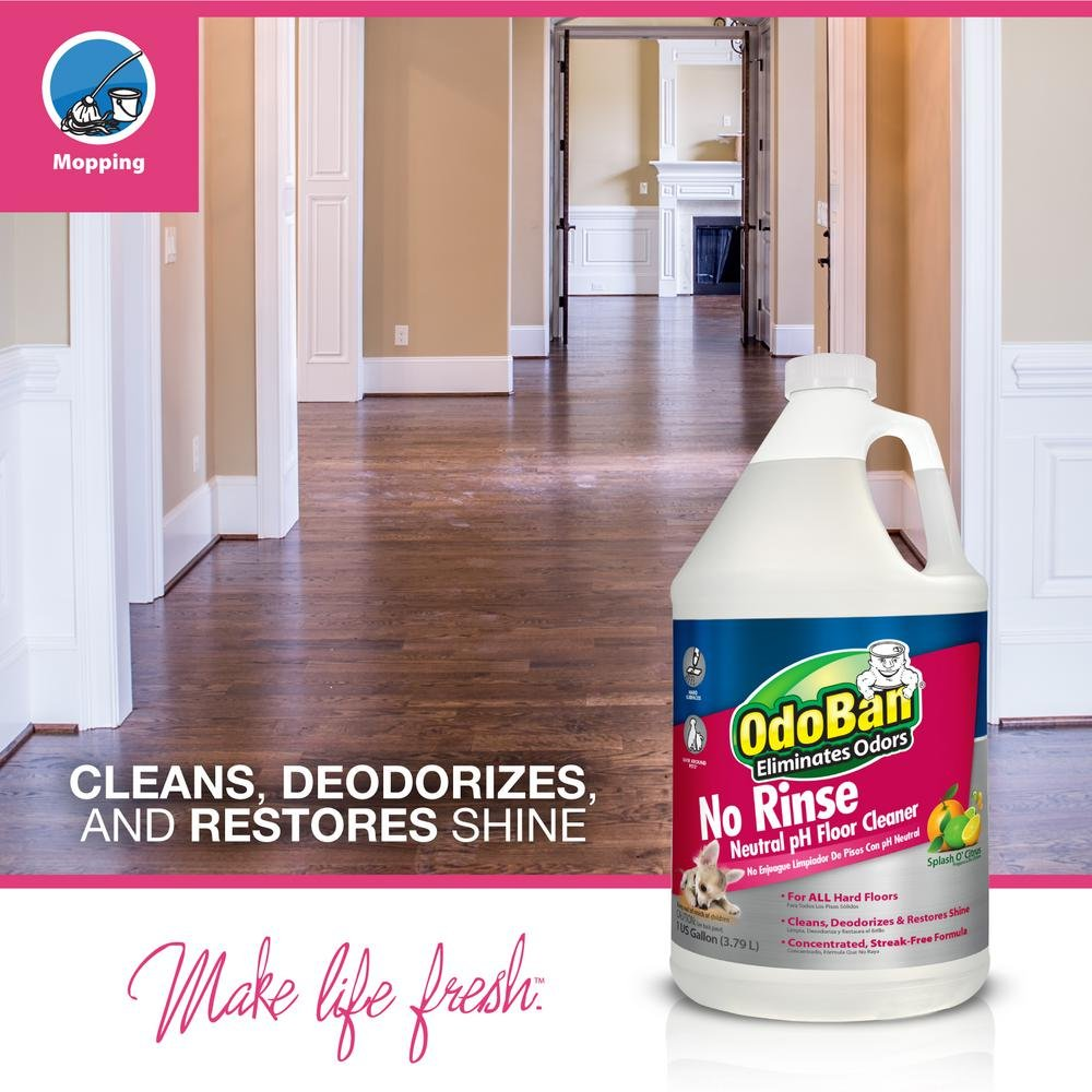 OdoBan Pet Solutions 1 Gal Neutral pH Floor Cleaner Concentrate, 4-Pack