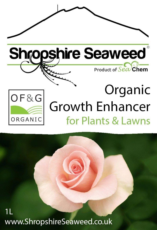 Fertilizante / abono orgánico de algas marinas - 1L - Otros volúmenes disponibles: Amazon.es: Jardín