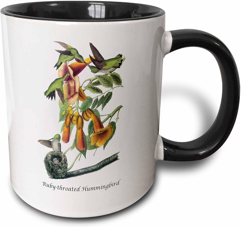 3dRose Ruby-throated Hummingbird by John James Audubon Two Tone Mug, 11 oz, Black/White
