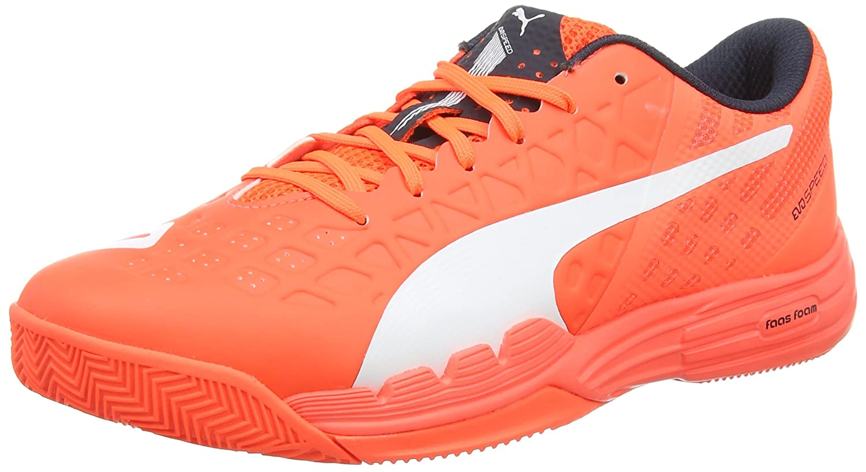 chaussures puma evospeed indoor 3.4