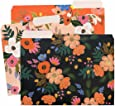 Lively Floral Letter Sized File Folders by Rifle Paper Co. -- 2 Styles