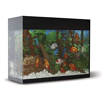 ICA KXI68N Kit Aqualux con Filtro Interior, Negro: Amazon.es ...