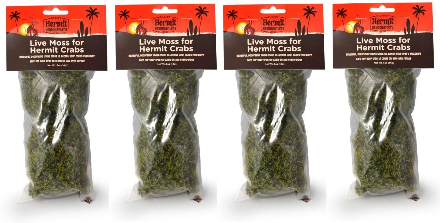 Fluker's Live Moss for Hermit Crabs, 0.5-Ounce (Fоur Расk)