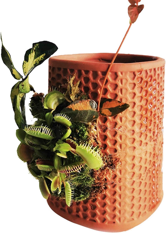 Automatic Drip Cartoon Indoor Lawn Sprinkler for Garden Flower Pot ...