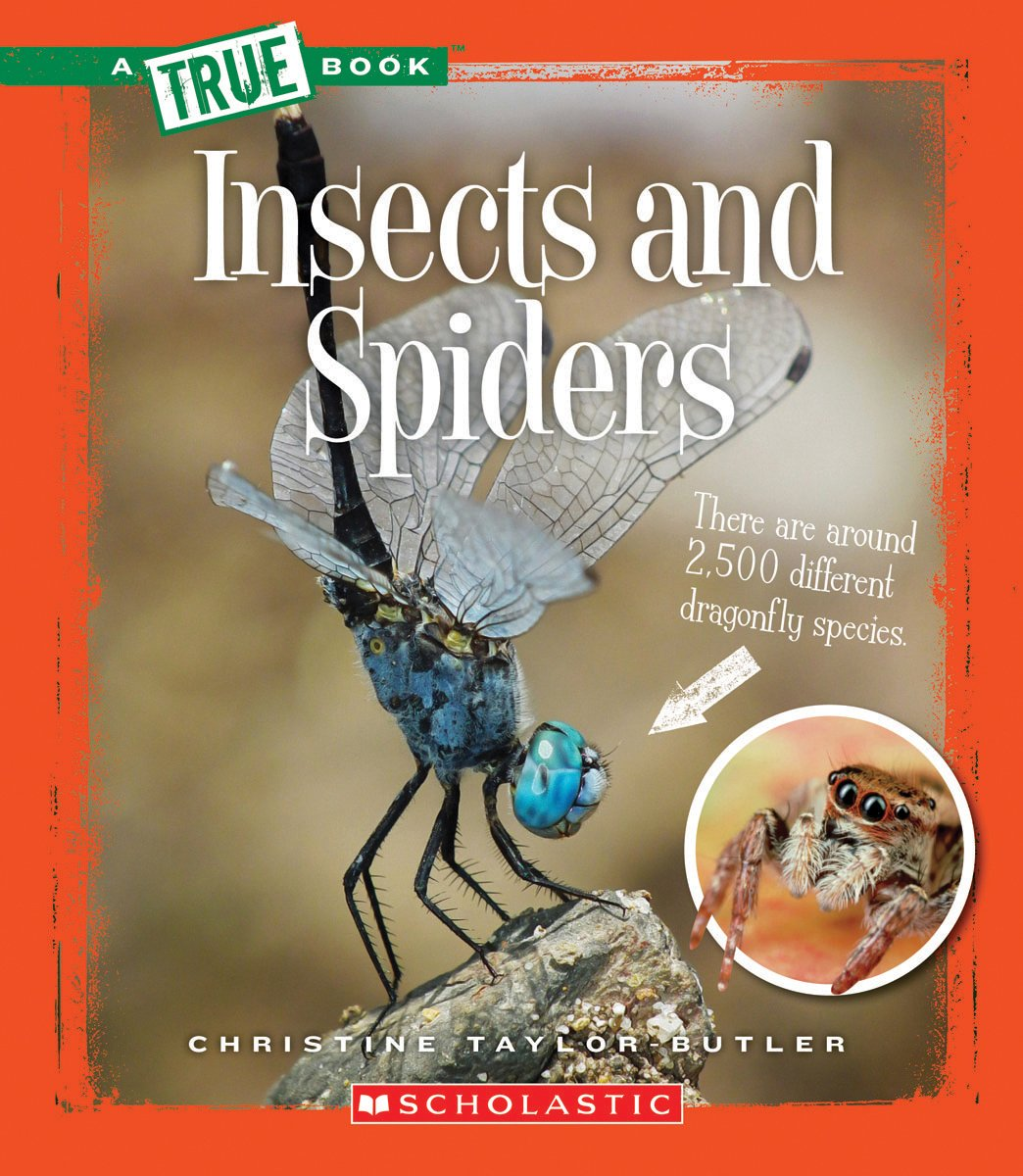 Insects and Spiders (A True Book) PDF