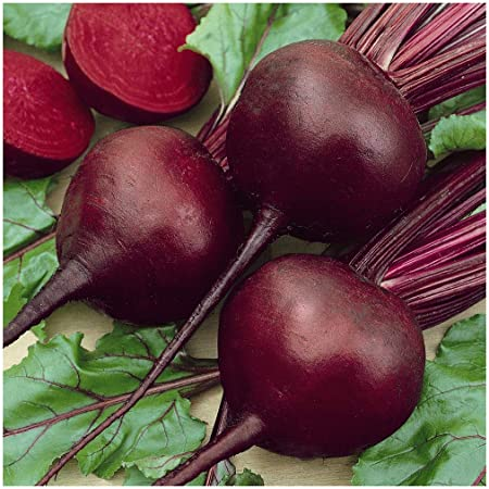 1//4 Lb Ruby Queen Beet Seeds Everwilde Farms Mylar Seed Packet