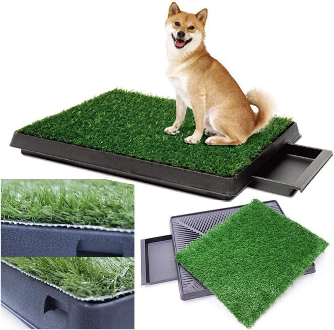 Amazon Com Dog Potty Training Pee Turf Grass Pad Indoor Pet Patch 25x20x2 5 Mat Trainer Pet Supplies Hot promotions in grass pad on aliexpress: dog potty training pee turf grass pad indoor pet patch 25x20x2 5 mat trainer