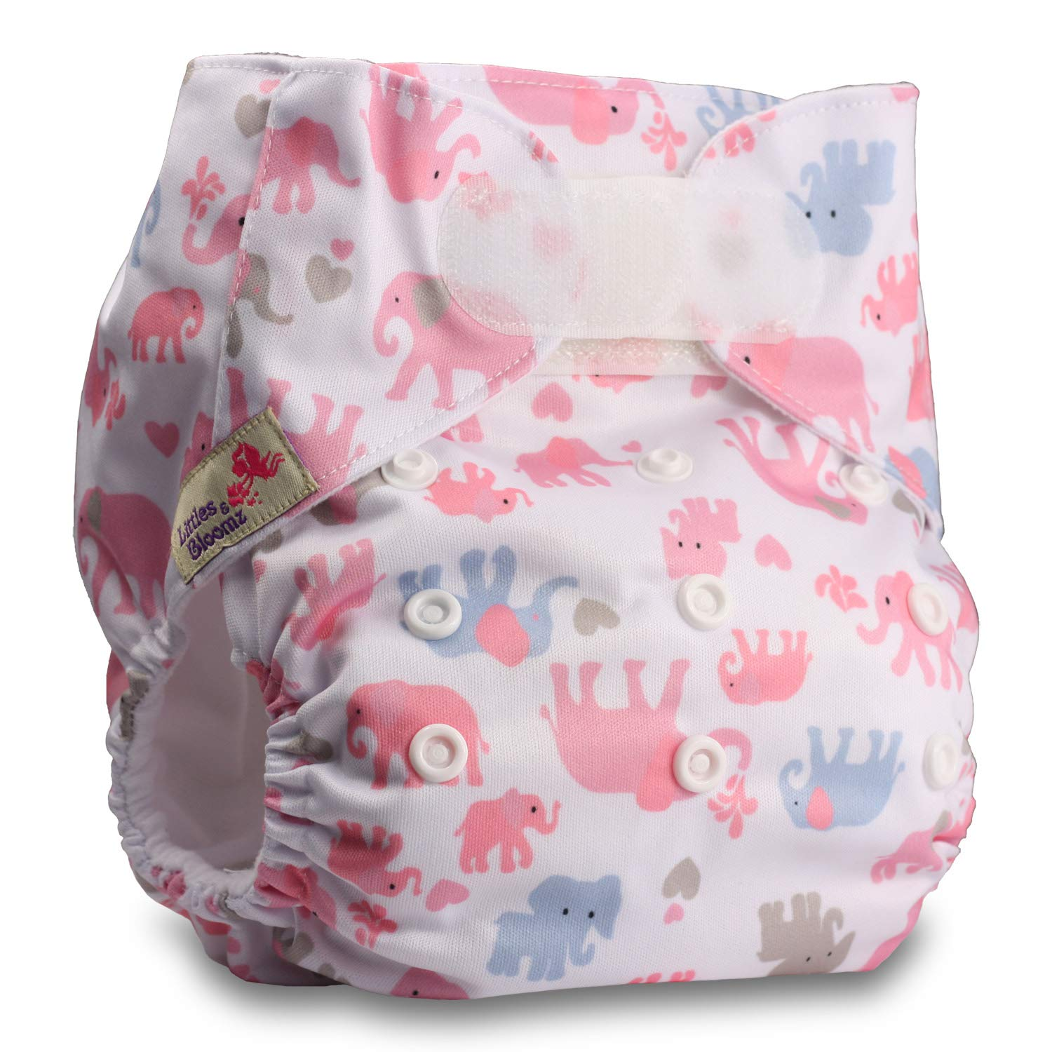 Littles /& Bloomz Set of 1 Pattern 66 Fastener: Hook-Loop with 1 Bamboo Insert Reusable Pocket Cloth Nappy