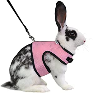 Niteangel Adjustable Soft Harness with Elastic Leash