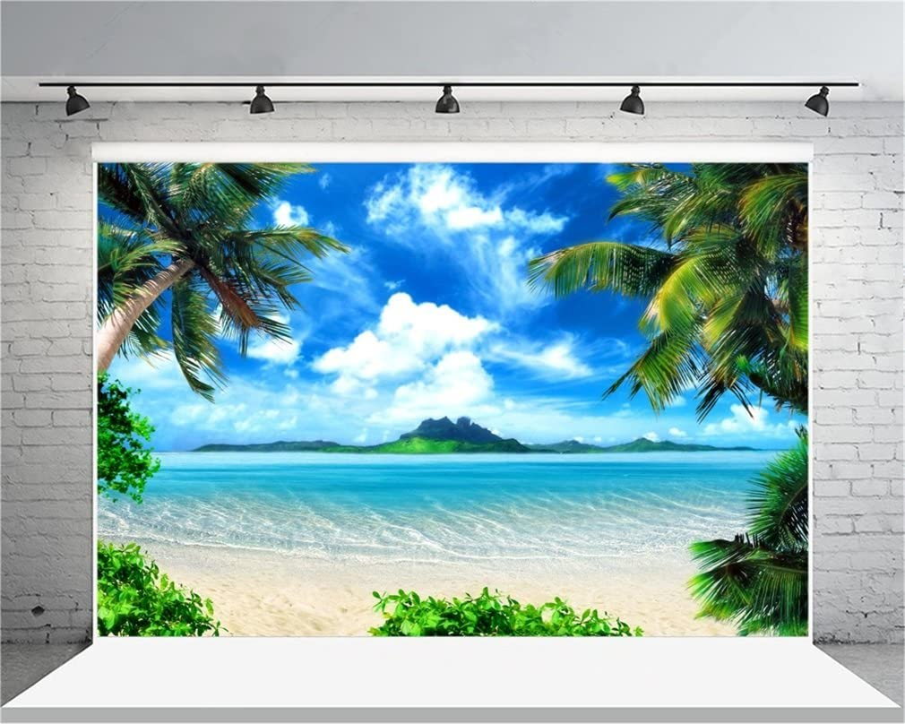 Tropical 8x10 FT Backdrop Photographers,Exotic Beach with Coconut Palm Tree and Horizon Sunset Calm Panorama Background for Baby Birthday Party Wedding Vinyl Studio Props Photography