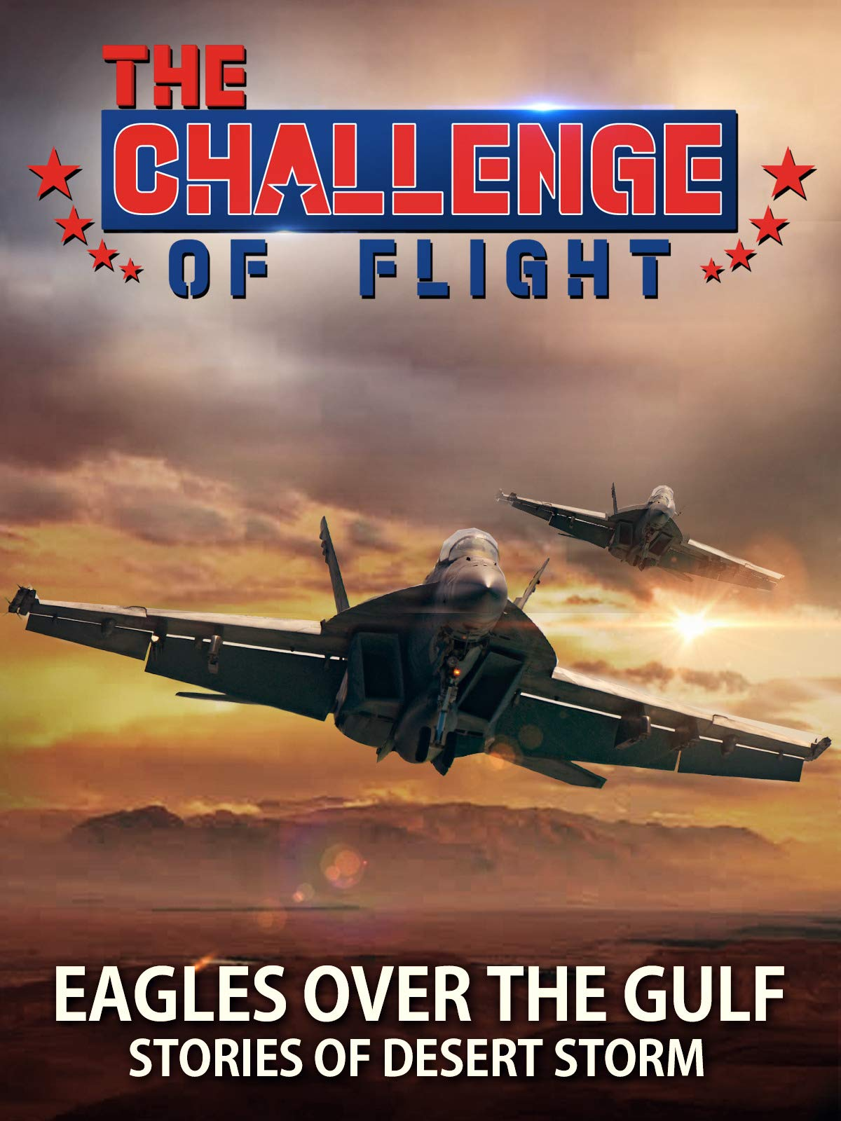 The Challenge of Flight - Eagles Over The Gulf Desert Storm Stories