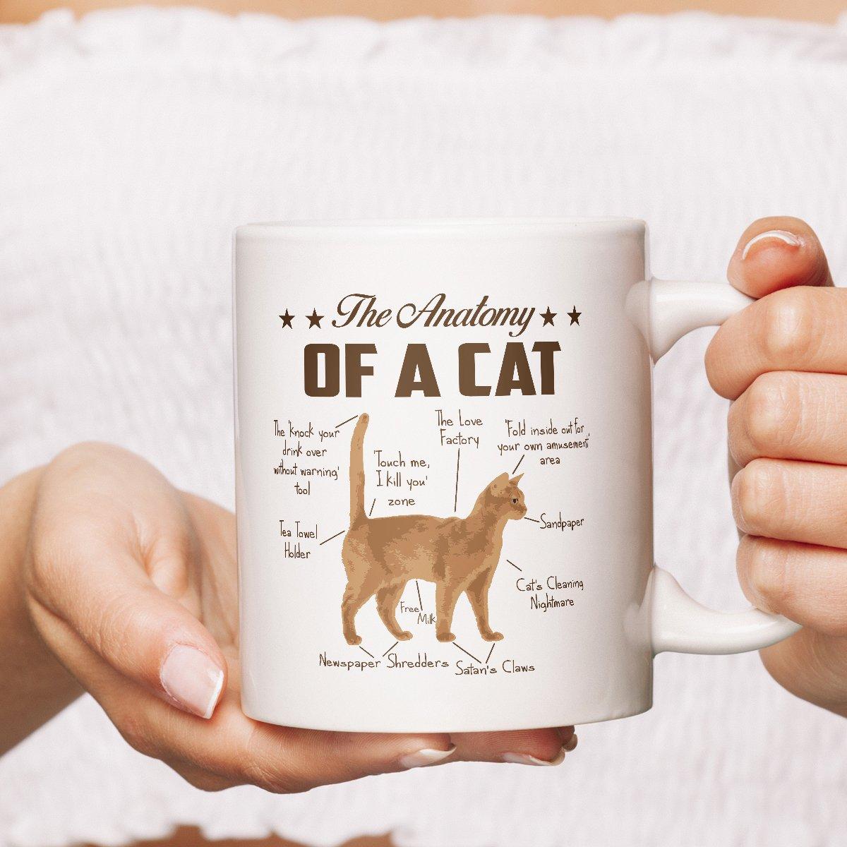 Amazon.com: Funny Anatomy Cat Mug - 15 oz White Coffee   Tea Mug ...