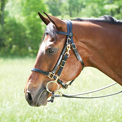 NEW HORSE TACK! BLACK Leather Horse Halter Bridle Combination with Reins
