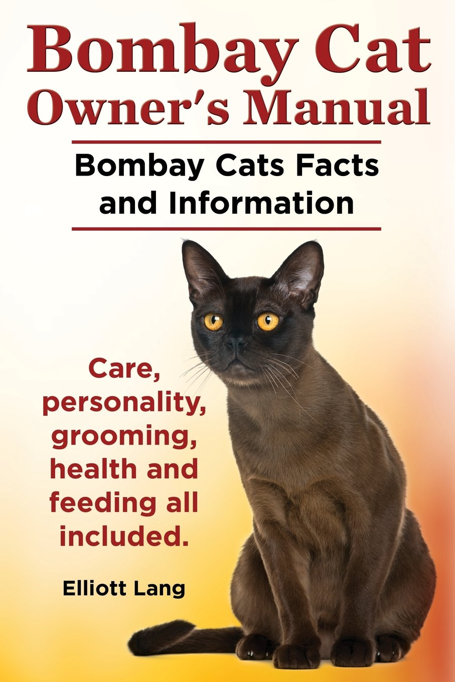 bombay cat owner s manual bombay cats facts and information care