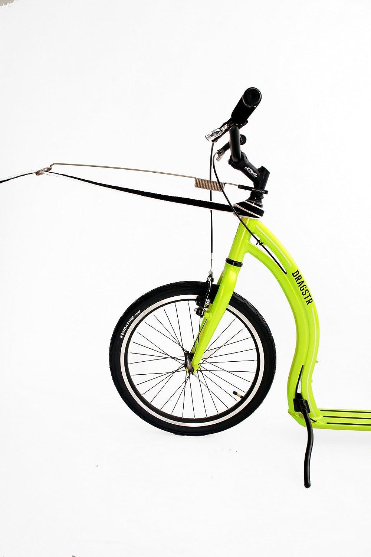 yedoo mushing Set Black - Bike Antena zugführung Lino Guía ...
