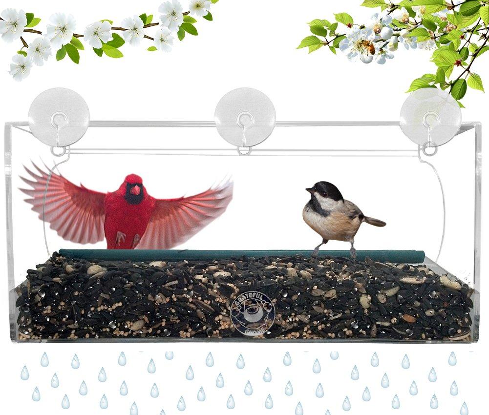 amazon com grateful gnome long window bird feeder for small