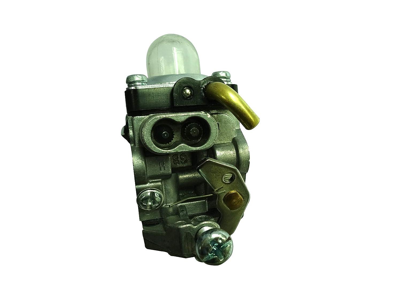 Amazon.com: C·T·S Carburador para Husqvarna 122C 122LDX ...