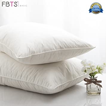 95 feather 5 down pillow inserts 20 x 20 square 2pack sham