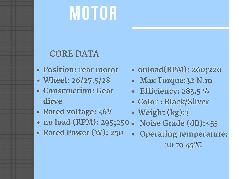 GoGoA1 36V 250W Brushless Geared Hub Motor E-Bike with Wheel Drive ...