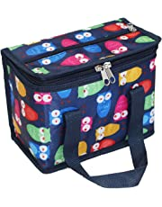 TEAMOOK Insulated Lunch Bag Lunch Tote Box 1Pcs 6 cans