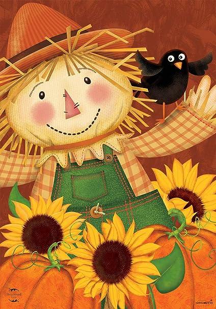 Briarwood Lane Happy Scarecrow Fall House Flag Sunflowers Pumpkins 28 X 40 Garden Outdoor