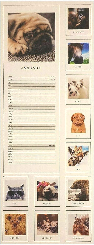 2020 Aww-Dorable Animals Adorable Cute Small Bookmark Calendar Tear Off 14.8cm x 5.5cm Christmas Gift Slim