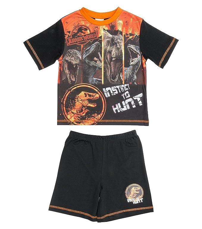Jurassic World Pijama Dos Piezas - para niño: Amazon.es: Ropa y accesorios