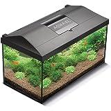 Aquael 5905546192163 Aquarium Set Leddy Led 40, 25 Liter Komplett Aquarium Mit Moderner Led Technik