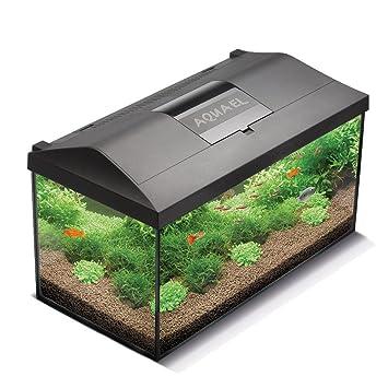 Aquael Acuario Set LEDDY LED 40, 25 Litro completo acuario con moderno LED Tecnología: Amazon.es: Productos para mascotas