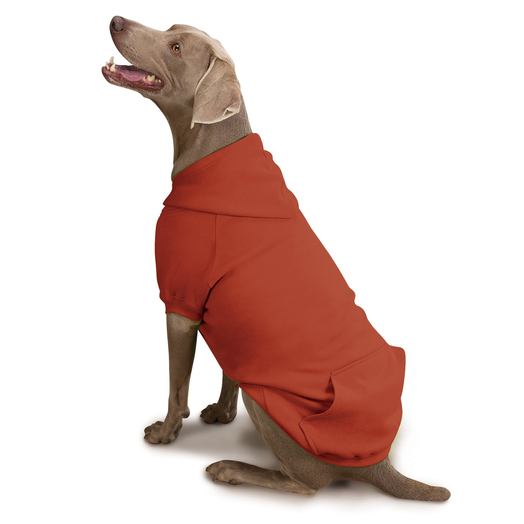 Zack & Zoey Forest Friends Reversible Hoodie for Dogs, Orange, Large