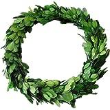 D.Jacware 10 Inch Boxwood Wreath Indoor Outdoor