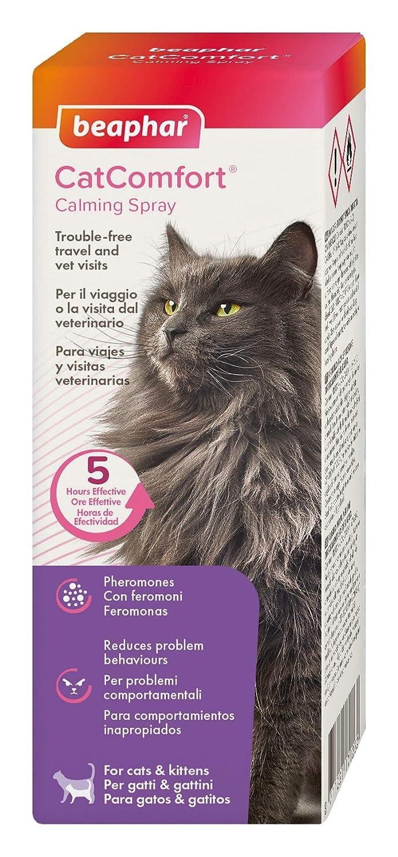 Beaphar Catcomfort Spray para Gatos, 60 ML: Amazon.es: Productos para mascotas