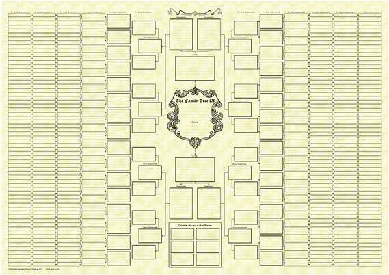 Arbre Genealogique Arborescence Pour 10 Generations Sur Papier Parchemin Amazon Fr Fournitures De Bureau