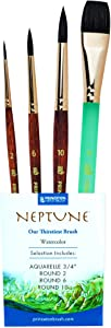 Princeton Neptune Professional Watercolor Brushes 4750 Series - 4pc Soft Synthetic Squirrel Brush Set for Watercolor Painting - Aquarelle 3/4 Inch - Round 2 - Round 6 - Round 10 - Artist Paint Brushes