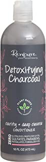 product image for Renpure Plant-Based Beauty Detoxifying Charcoal Clarify + Deep Cleanse Conditioner, 16 Fluid Ounce