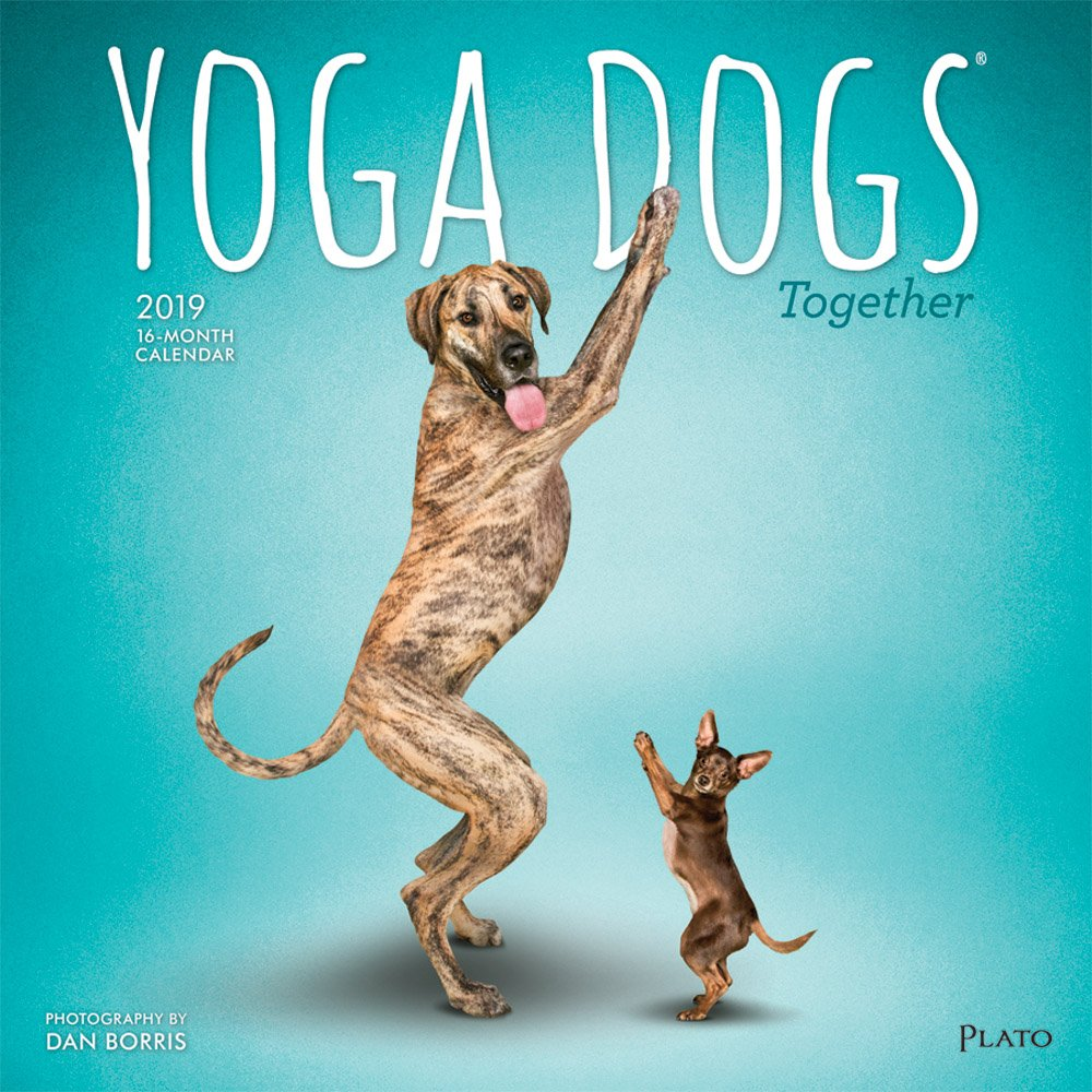 Yoga Dogs Together 2019 Calendar: Amazon.es: Inc. Browntrout ...