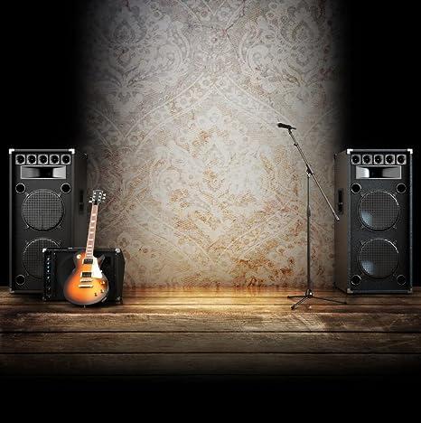 Música etapa telón de fondo fotográfico micrófono guitarra en suelos de madera tibetano tema fondo para estudio fotográfico 10 x 10 FT: Amazon.es: Electrónica